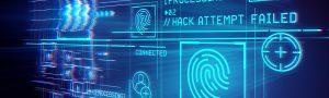 5 Top Cyber Crimes